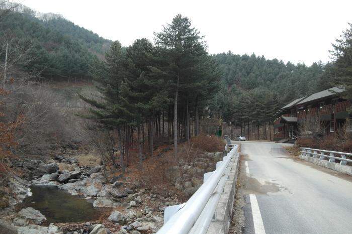산림문화휴양관