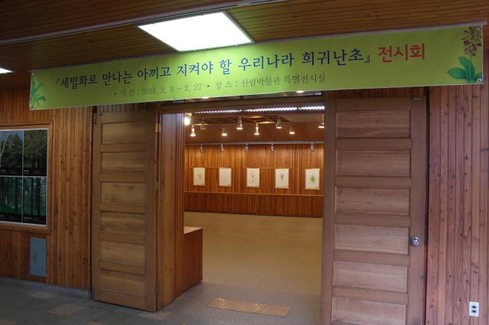 희귀난초 세밀화 전시회