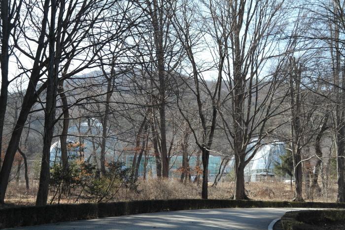 나무사이  열대식물자원 연구센터