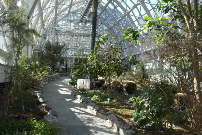 아열대식물 전시원