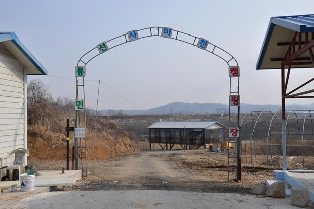 사미천 캠핑장