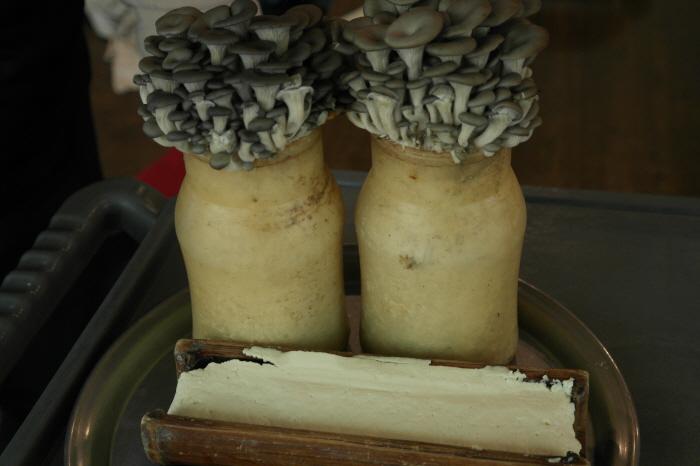 전골에 들어갈  버섯과 두부
