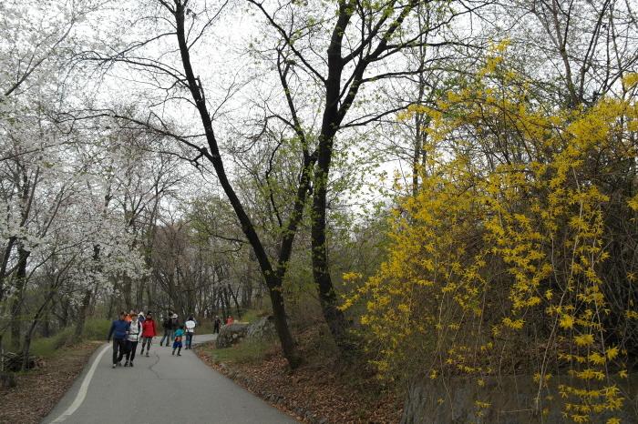 산책하는 주민들