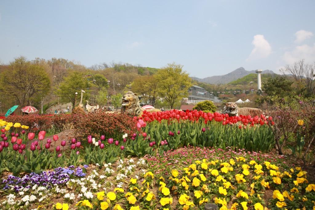 서울동물 241