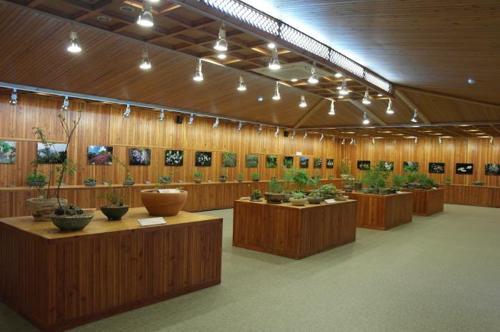 2015 희귀.특산식물 전시회
