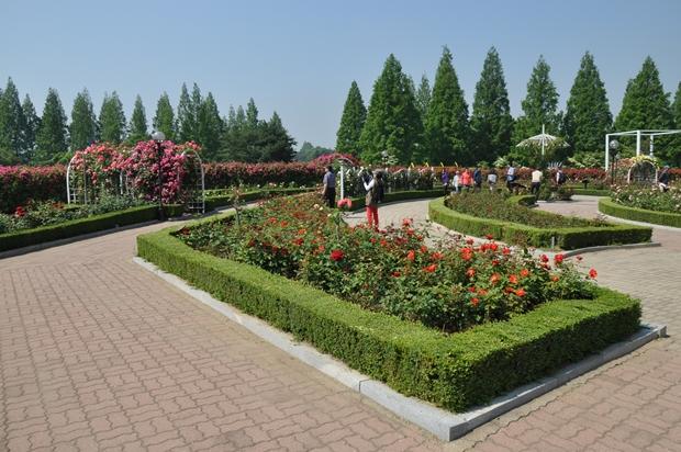 미로 정원