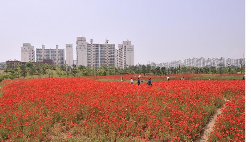 상동호수공원1