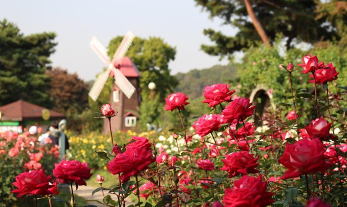 서울대공원4