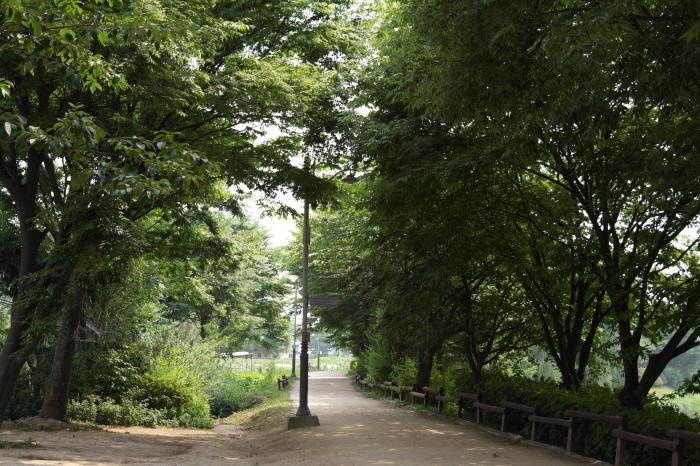 장자공원 산책로