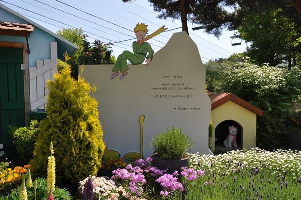 어린왕자 꽃밭