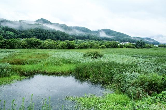 경안천습지생태공원016