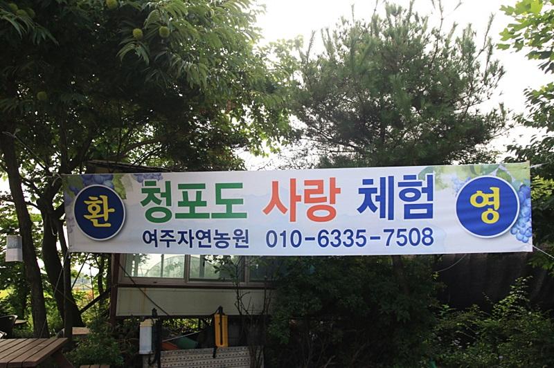 일괄편집_IMG_3010