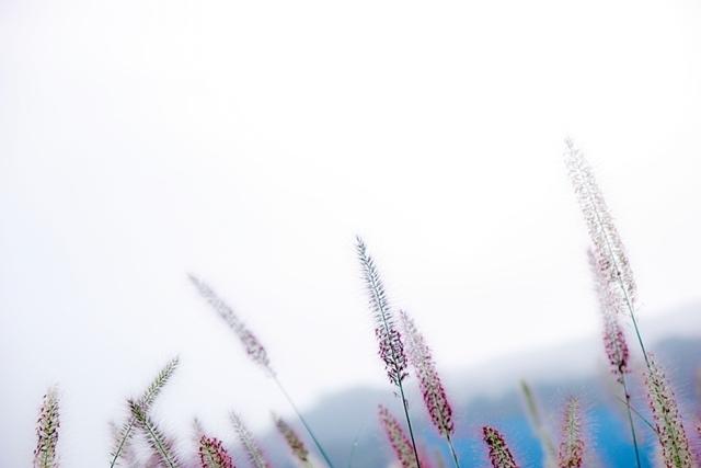 청석공원 (8)