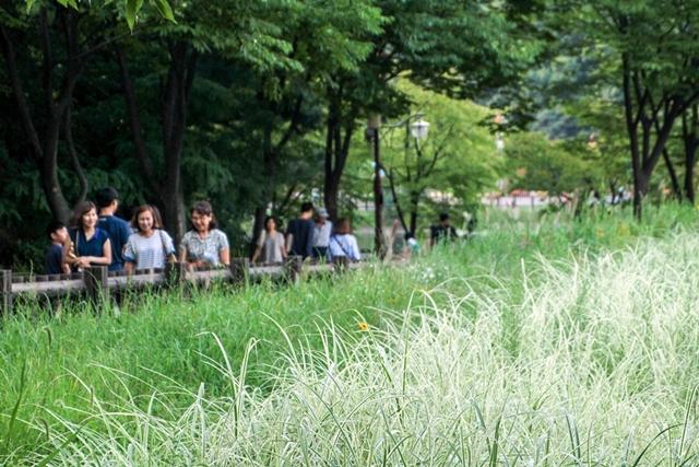 분당 율동공원 (3)