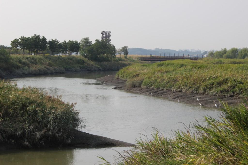 시흥갯골길,소래포구 075