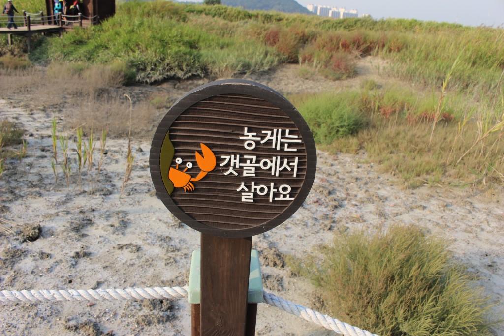 시흥갯골길,소래포구 243