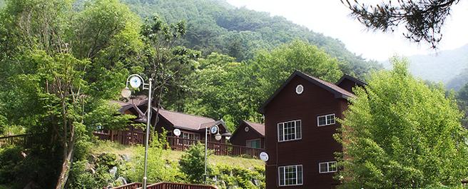용문산 자연휴양림