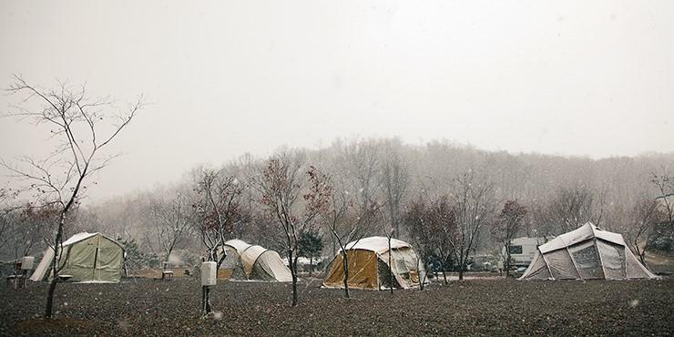 삼막곡 관광농원 우리꽃 캠핑장