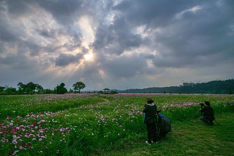 구리한강시민공원003