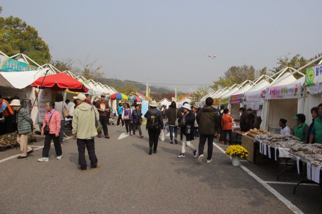 이천 쌀 문화축제 423