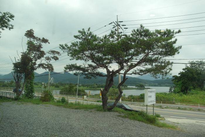 운길산막국수