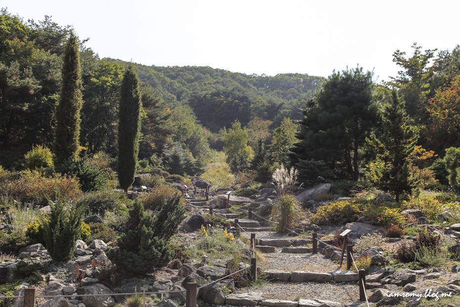 평강식물원_005