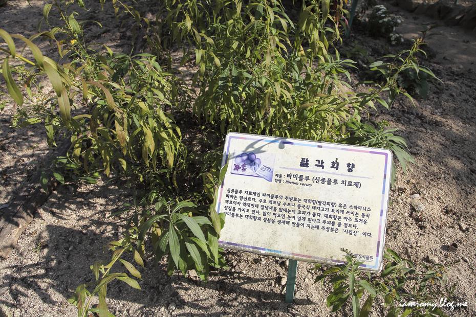 평강식물원_008