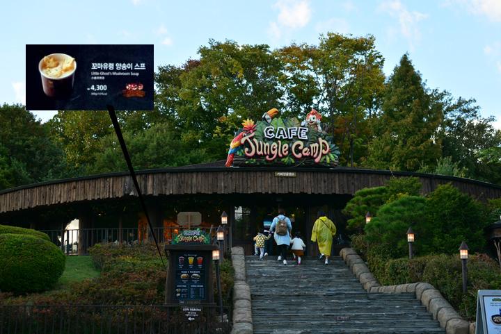 카페 정글캠프