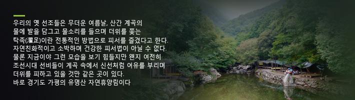 가평 유명산 자연휴양림 설명