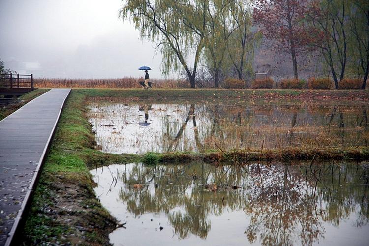 다산생태공원014