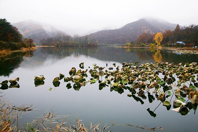 다산생태공원022