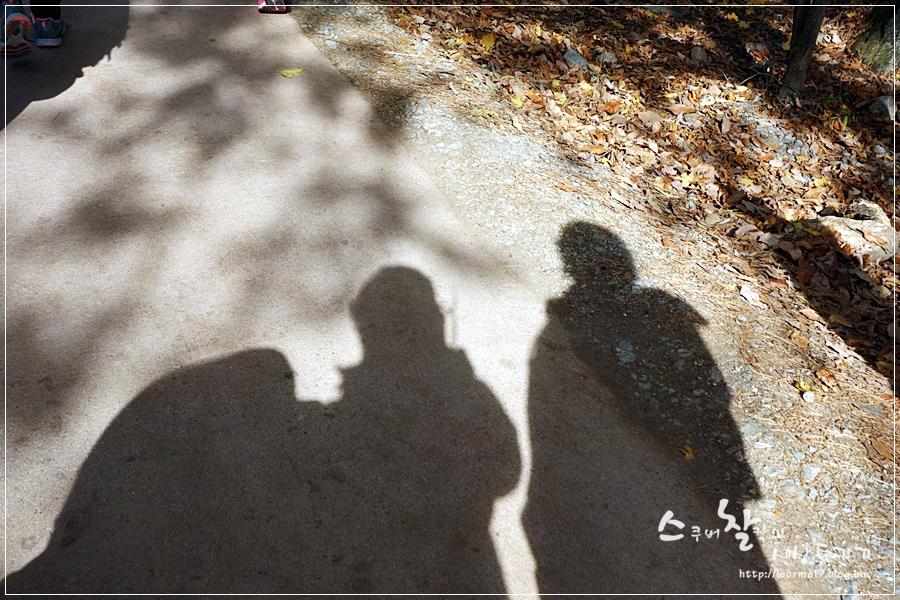용문산 (15)