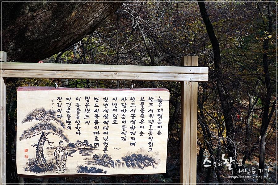 용문산 (21)