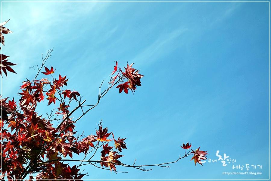 용문산 (9)