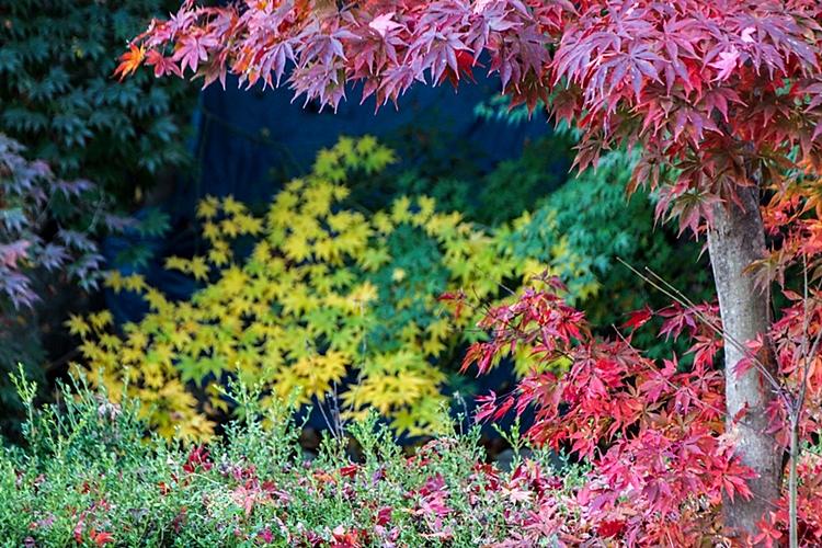 율봄식물원012