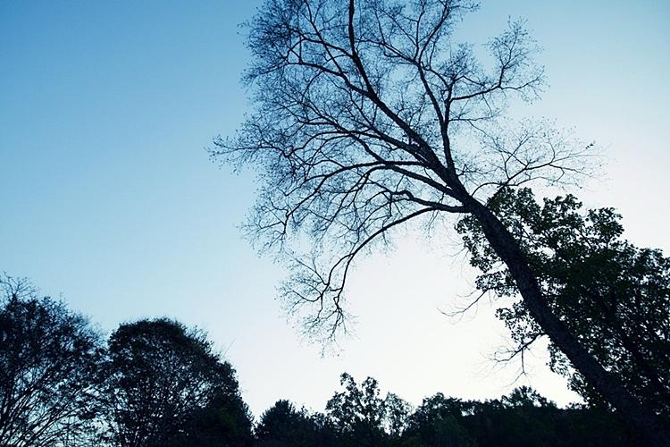 율봄식물원015