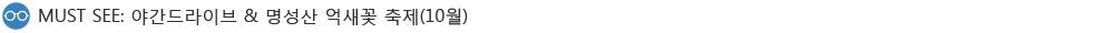 야간드라이브와 명성산 억새꽃 축제(10월)