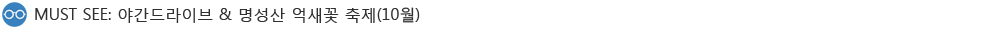 MUST SEE: 야간드라이브와 명성산 억새꽃 축제(10월)