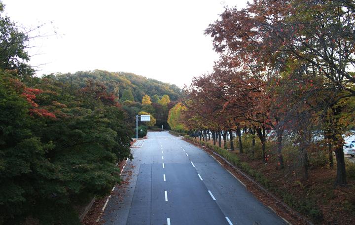 서울대공원역 인근