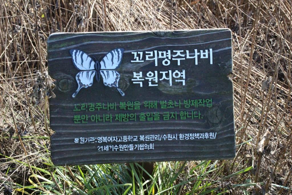 고색행토문화간 269