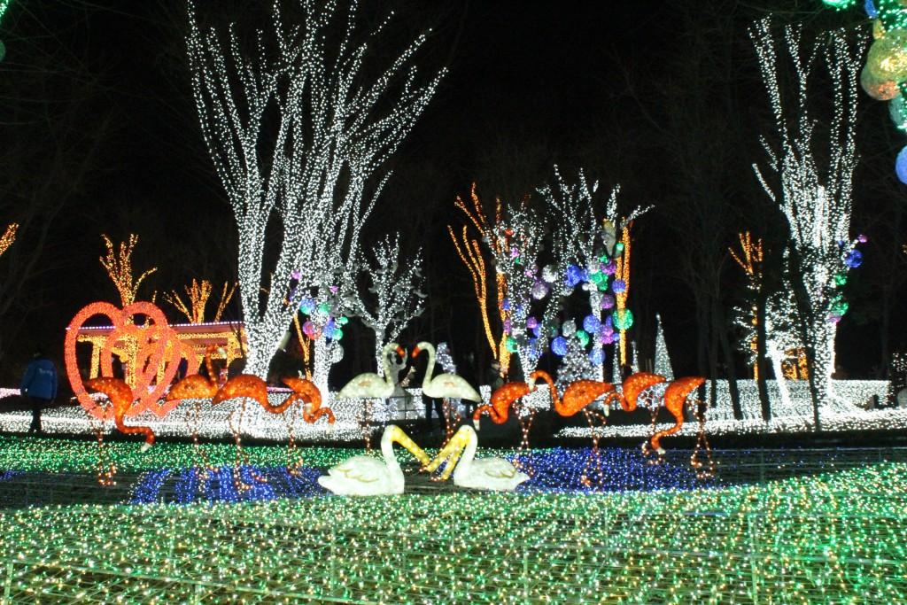 산앤들,안산포토랜드 171