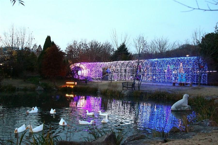 양평 들꽃수목원 불빛축제