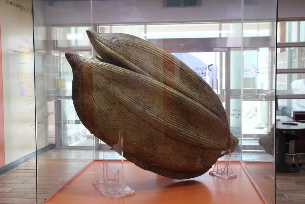 볍씨박물관 077