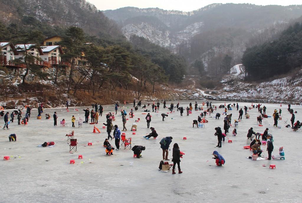 양평빙어축제(수미마을)
