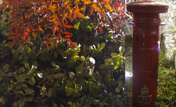 프리미엄 아울렛 정원