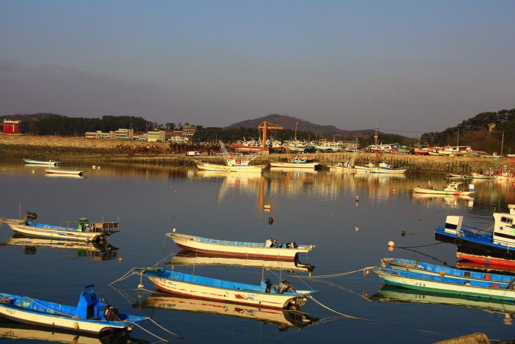 강남맛집, 궁평항, 안산유리 139