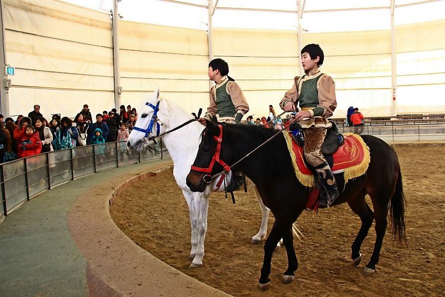 남양주 몽골문화촌 마상공연