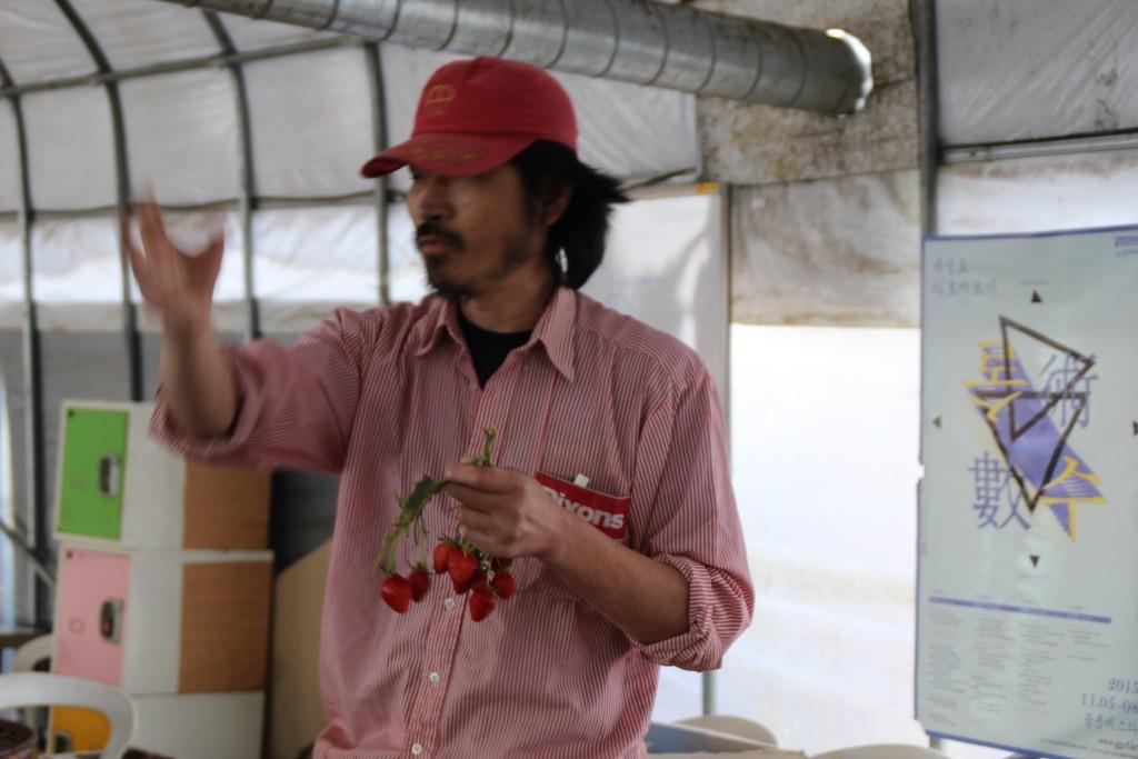 딸기축제.딸기,여운영박물관 005