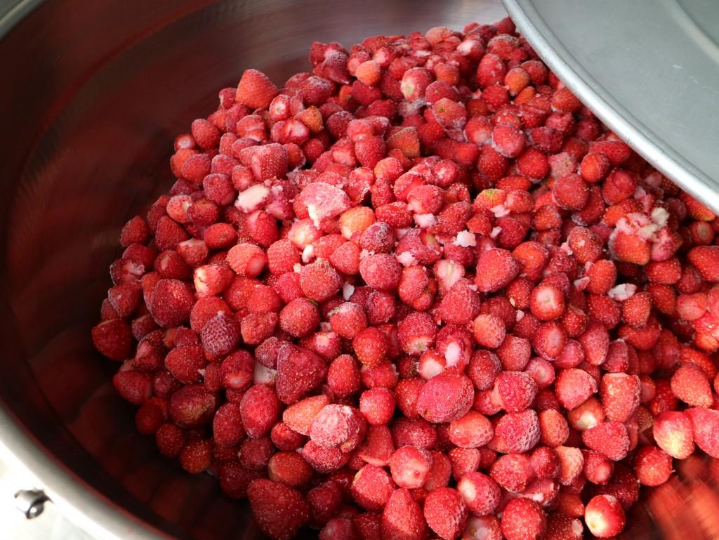 기계 안에 가득한 딸기들