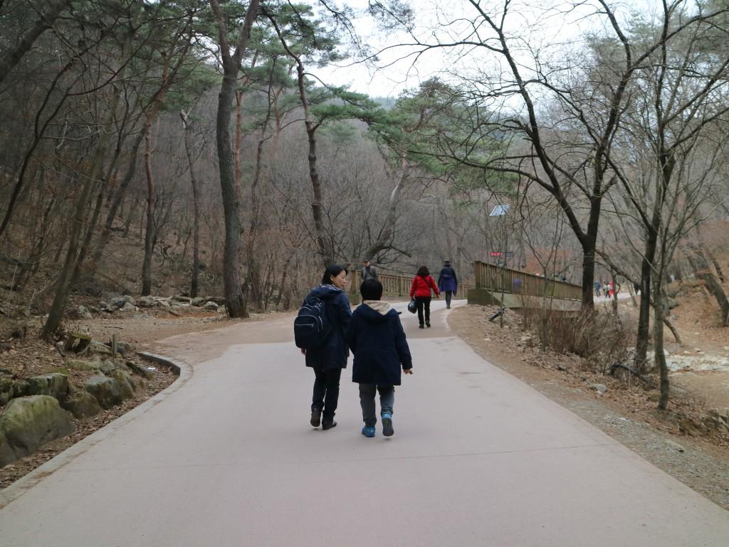 양평딸기, 안산다문화 131